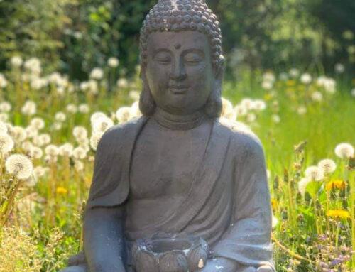 Reiki Übungs- und Meditationsabende